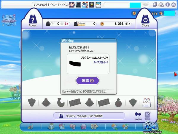 20100619PPG_202s.jpg